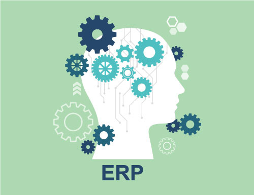 ERP Implementations & Customizations